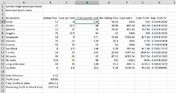 Daily sales columns between columns C and N are hidden