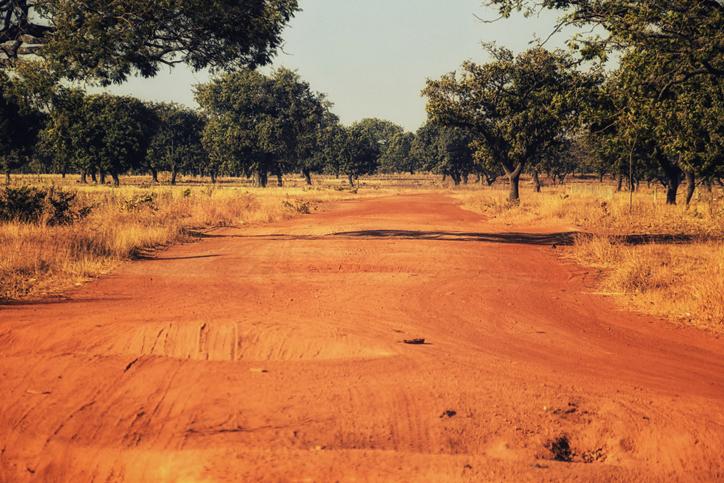 Dirt road in Ghana